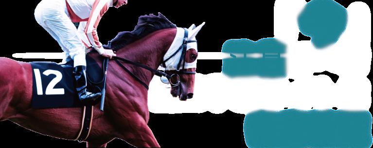 『今』注目すべき競馬予想サイトを徹底検証