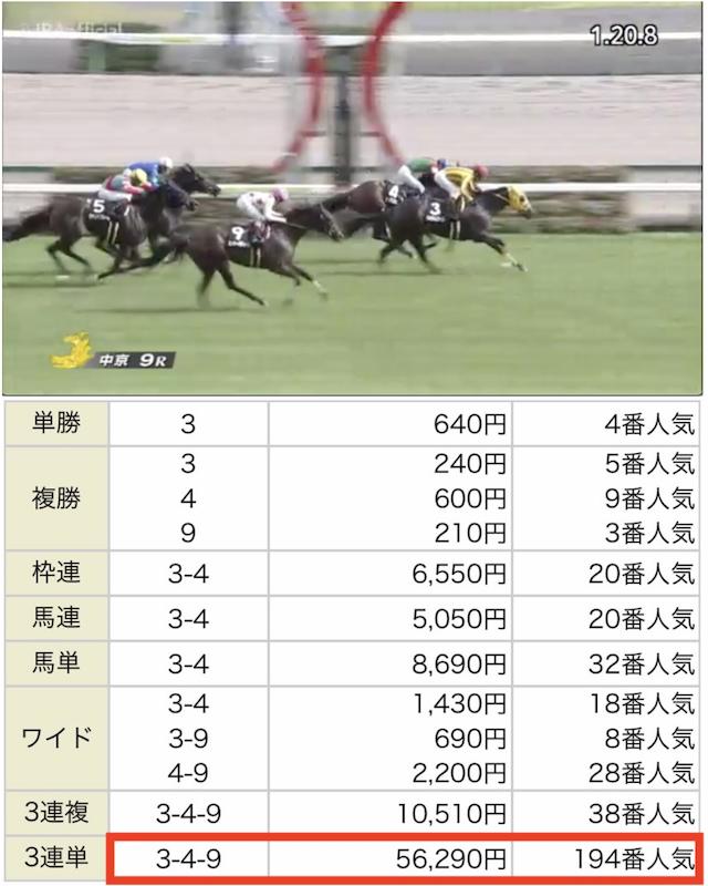 FINALHORSE14